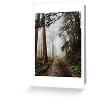 Forrest Fog Greeting Card