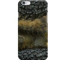 Chimpmunk iPhone Case/Skin
