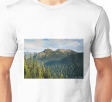Valley of the American River Unisex T-Shirt