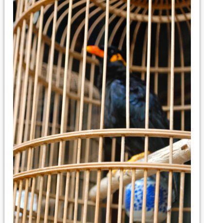 Caged bird Sticker
