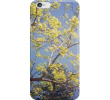 Yellow delight iPhone Case/Skin