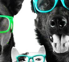 2 Woofs, 1 Meow 2.0 Sticker