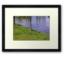 Soap bubbles in the park. Framed Print