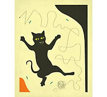 BLACK CAT WITH STRING Photographic Print