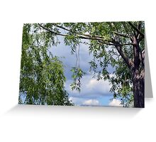 Trees in the park and cloudy sky. Greeting Card