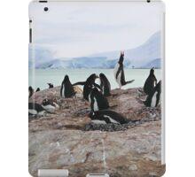 Gentoo Penguin Rookery on Trinity Island, Antarctica iPad Case/Skin