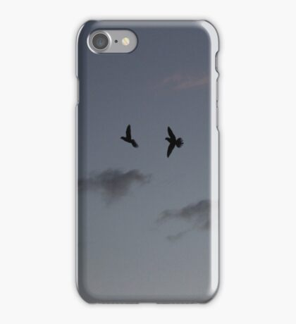 Fly By at Dusk iPhone Case/Skin