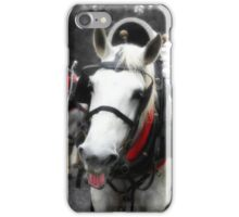 The Happy Horse  iPhone Case/Skin