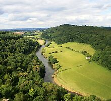 Picturesque view from Symonds Yat Rock by Grace Johnson