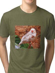 I'm SO Pretty Tri-blend T-Shirt