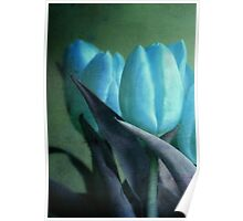 Textured Blue Tulips Poster