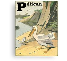 P is for Pelican - French Alphabet Animals Canvas Print
