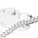 Jack and the rope... Pancill sketch - Jack Russell Puppy by Qnita