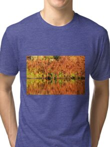 Reflections of the Fall Tri-blend T-Shirt