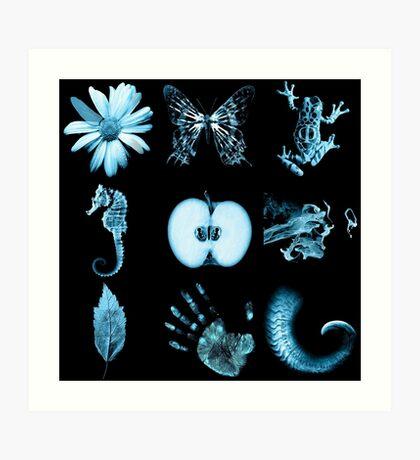 Fringe Glyphs all nine symbols Art Print