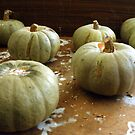 On the shelf: sad pumpkins by Stephen Frost