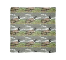 Rare Two-Headed Canada Goose Scarf