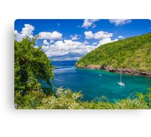 Tropical Lagoon Canvas Print