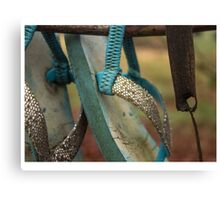 sandals in a shoe tree Canvas Print