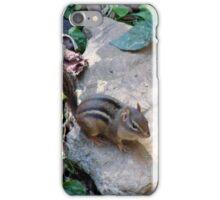 Rock 'n' Chipmunk iPhone Case/Skin