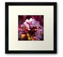 Copper leaves and Cherry blossom with artistic filter Framed Print