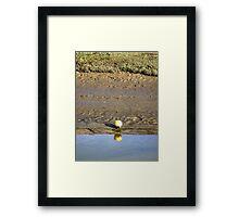 Little Buoy Framed Print