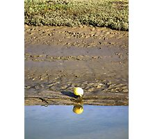 Little Buoy Photographic Print