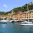 Boats in Portofino by annalisa bianchetti