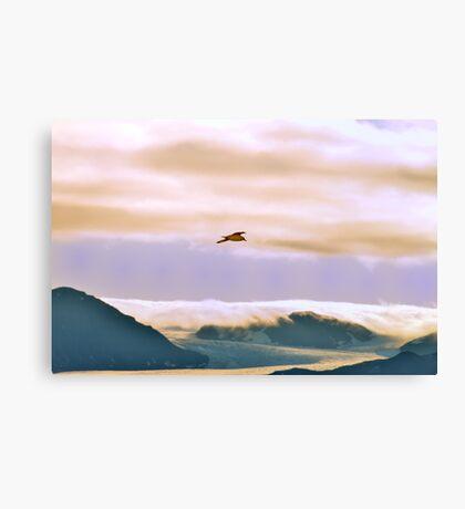 Arctic Glacier Canvas Print