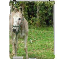 Jerusalem Donkey iPad Case/Skin