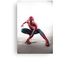 Spider Man Photography 3 Canvas Print
