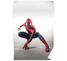 Spider Man Photography 3 Poster