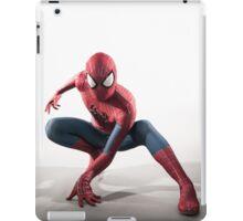 Spider Man Photography 3 iPad Case/Skin