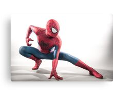 Spider Man Photography 4 Canvas Print