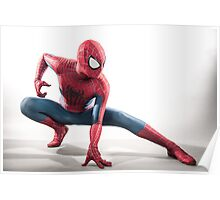 Spider Man Photography 4 Poster