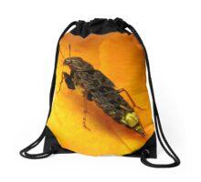 """I Wish I Was A Real Firefly"" Drawstring Bag"