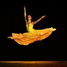 Light as a ballerina by BlaizerB