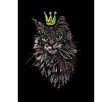 Banksy cat Photographic Print