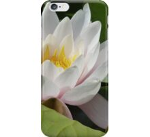 Floating beauty iPhone Case/Skin