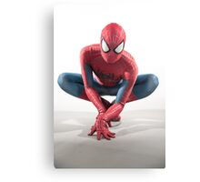 Spider Man Photography 5 Canvas Print