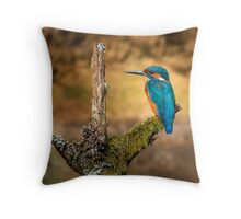 Kingfisher on branch Throw Pillow