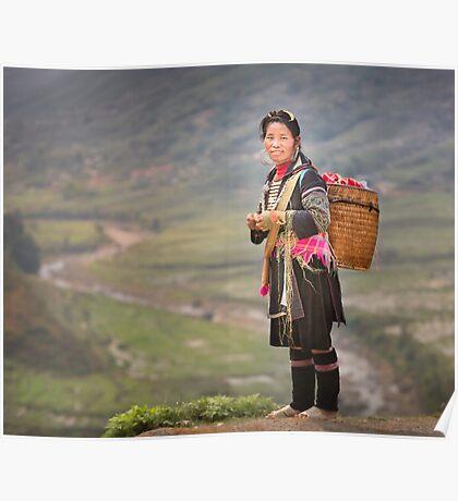 Vietnamese woman in landscape Poster