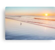 Maine beach at sunrise Canvas Print