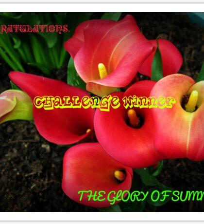 Glory of Summer Challenge Winner Banner Sticker