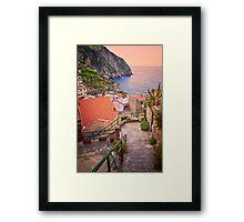 Steps to Riomaggiore Cinque Terre Italy Framed Print
