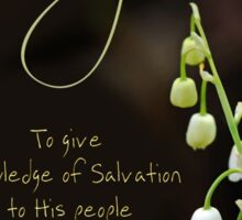 Knowing Salvation - Forgiveness Sticker