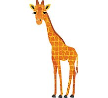 G is for Giraffe Photographic Print