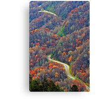 Curvy~Road Canvas Print