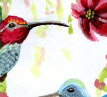 Anna's Hummingbird Pair Sticker