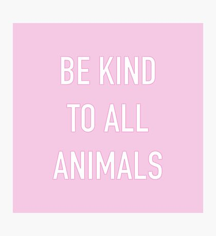 Be Kind To Animals Print Quote Photographic Print
